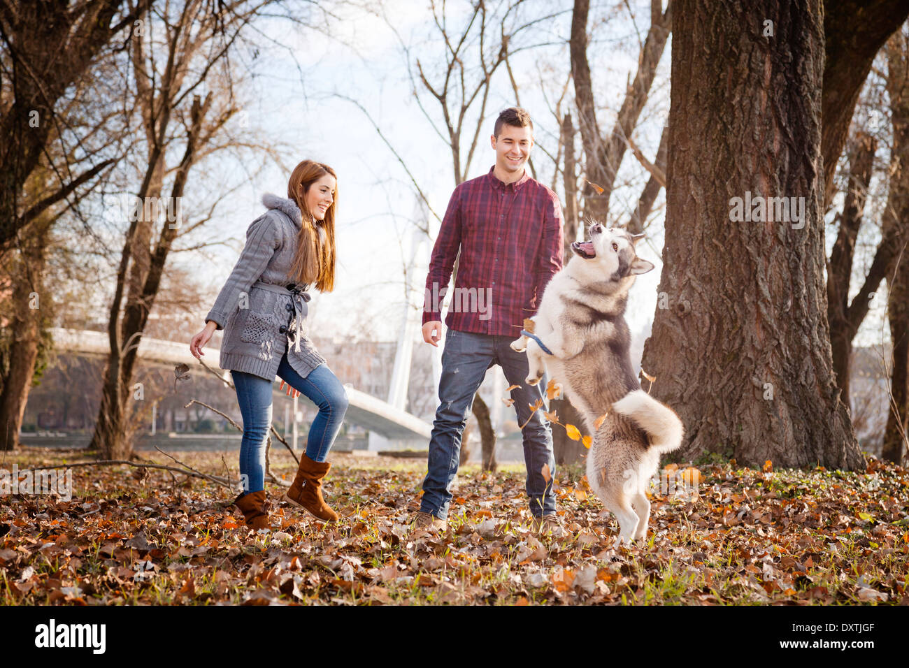 Couple with Dog in Park, Croatia - Stock Image