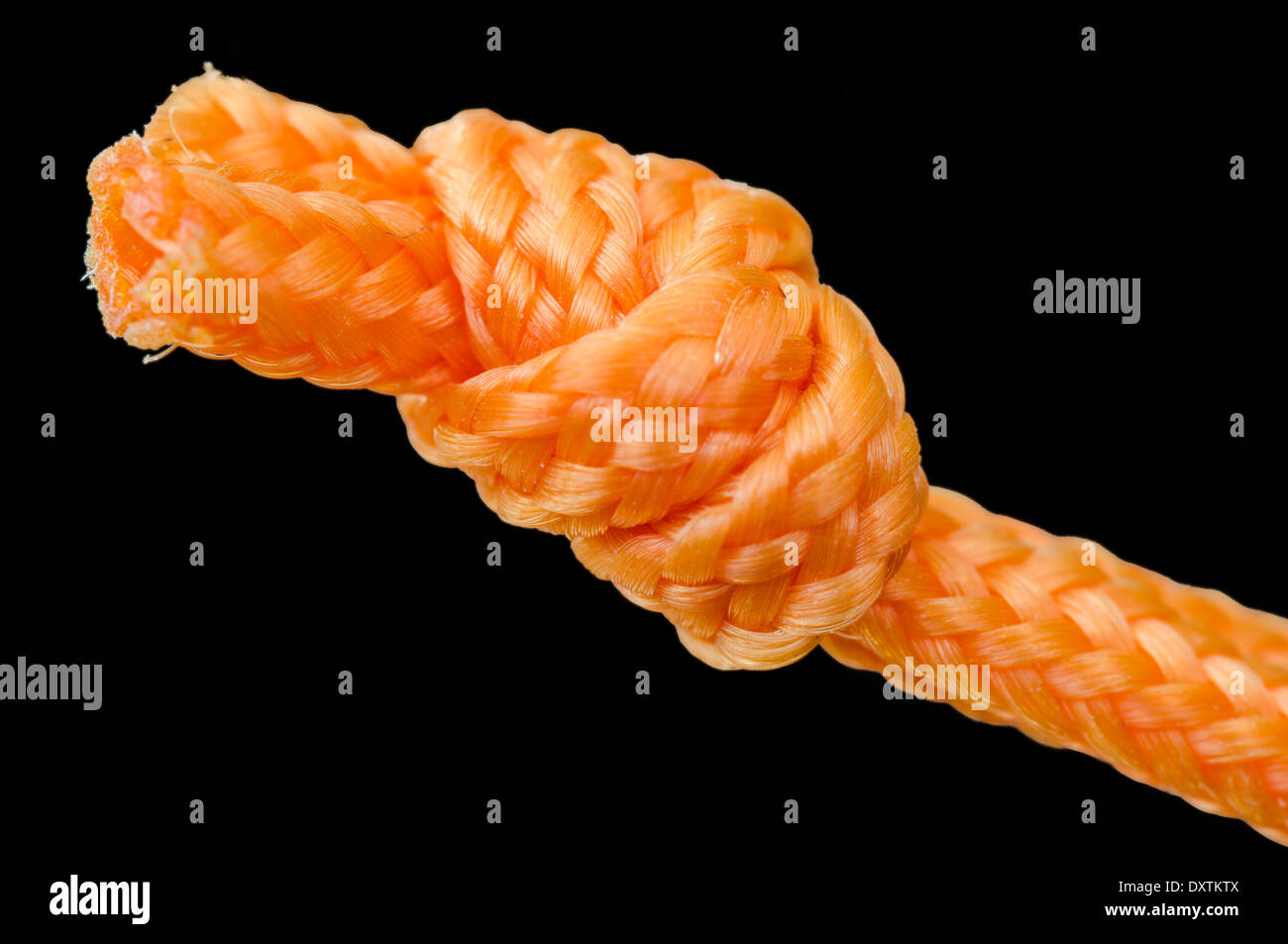 Knot. Closeup image of thick orange string tied in a knot, with a black background. - Stock Image