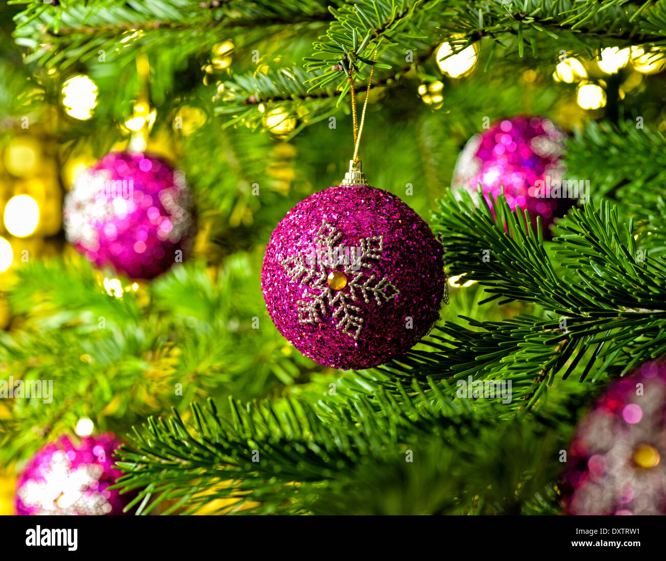 Bauble Ornament in a real Christmas tree in bright color Stock Photo ...
