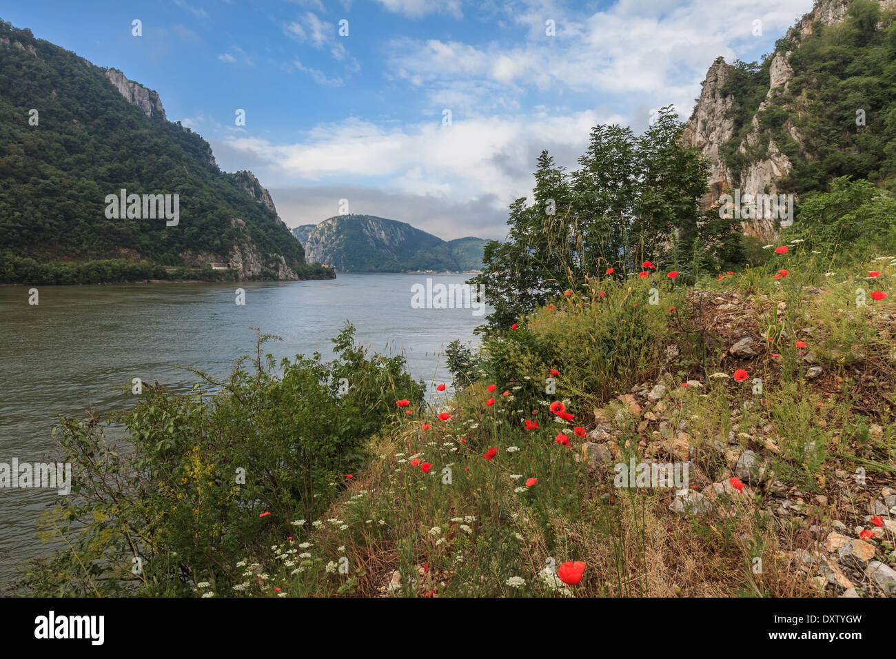 The Danube Gorges - Stock Image