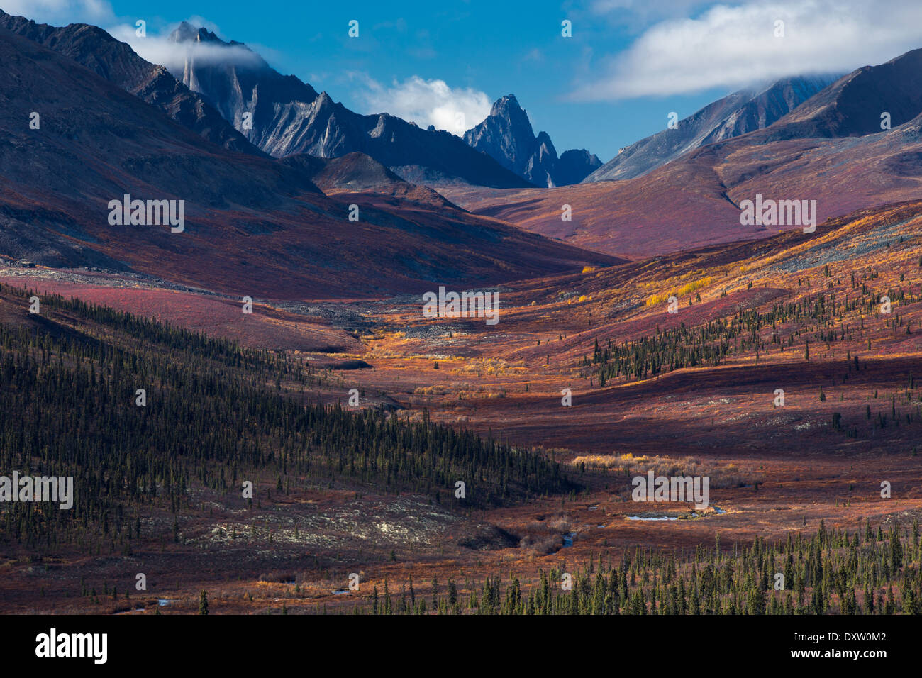 Tombstone Pass and the upper valley of the North Klondike River in autumn, Tombstone Territorial Park, Yukon Territories, Canada - Stock Image