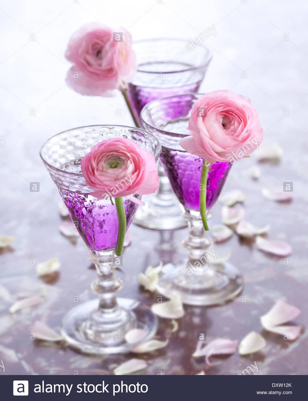 Violet cocktails - Stock Image
