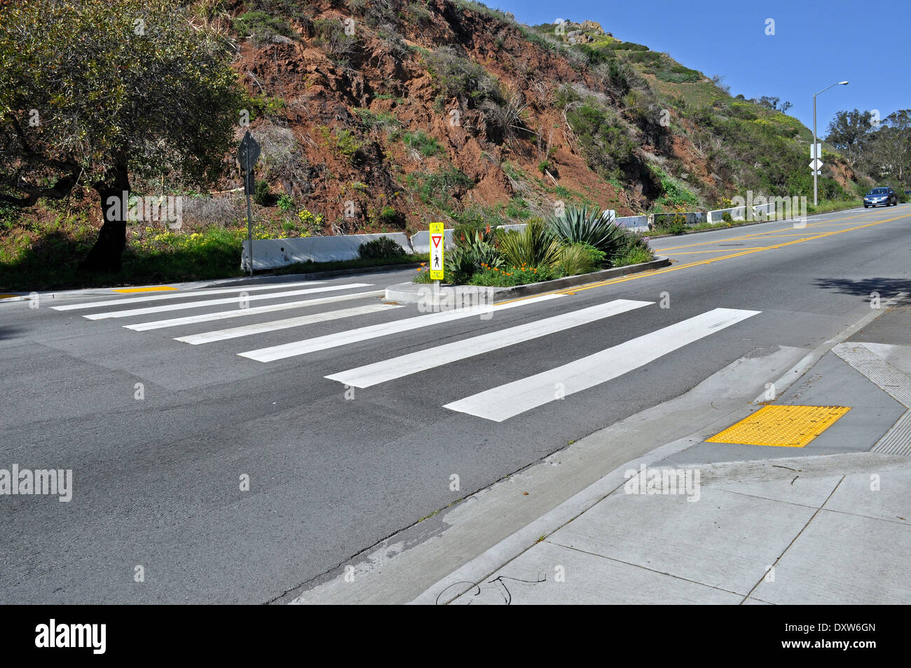 pedestrian crosswalk on O'Shaughnessy Boulevard San Francisco - Stock Image