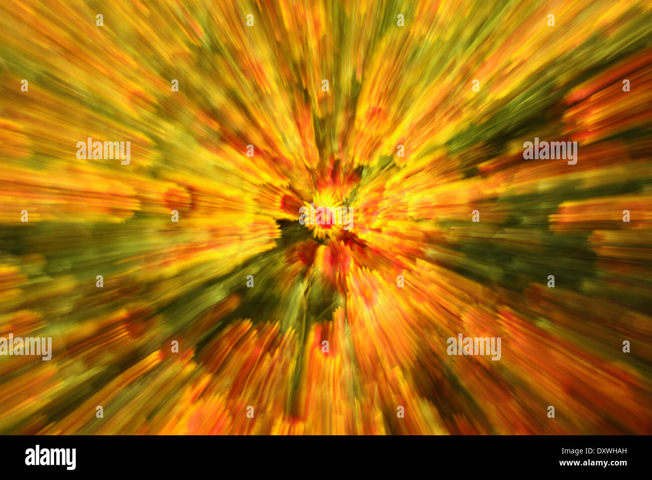 A zoom-blur of spring wildflowers - psychedelic. - Stock Image