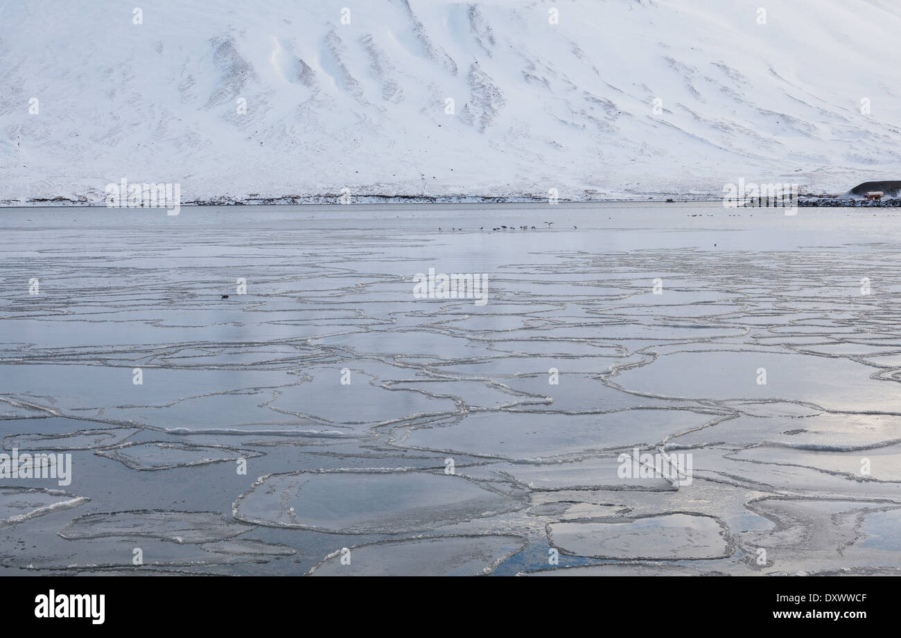 A frozen fjord - Stock Image