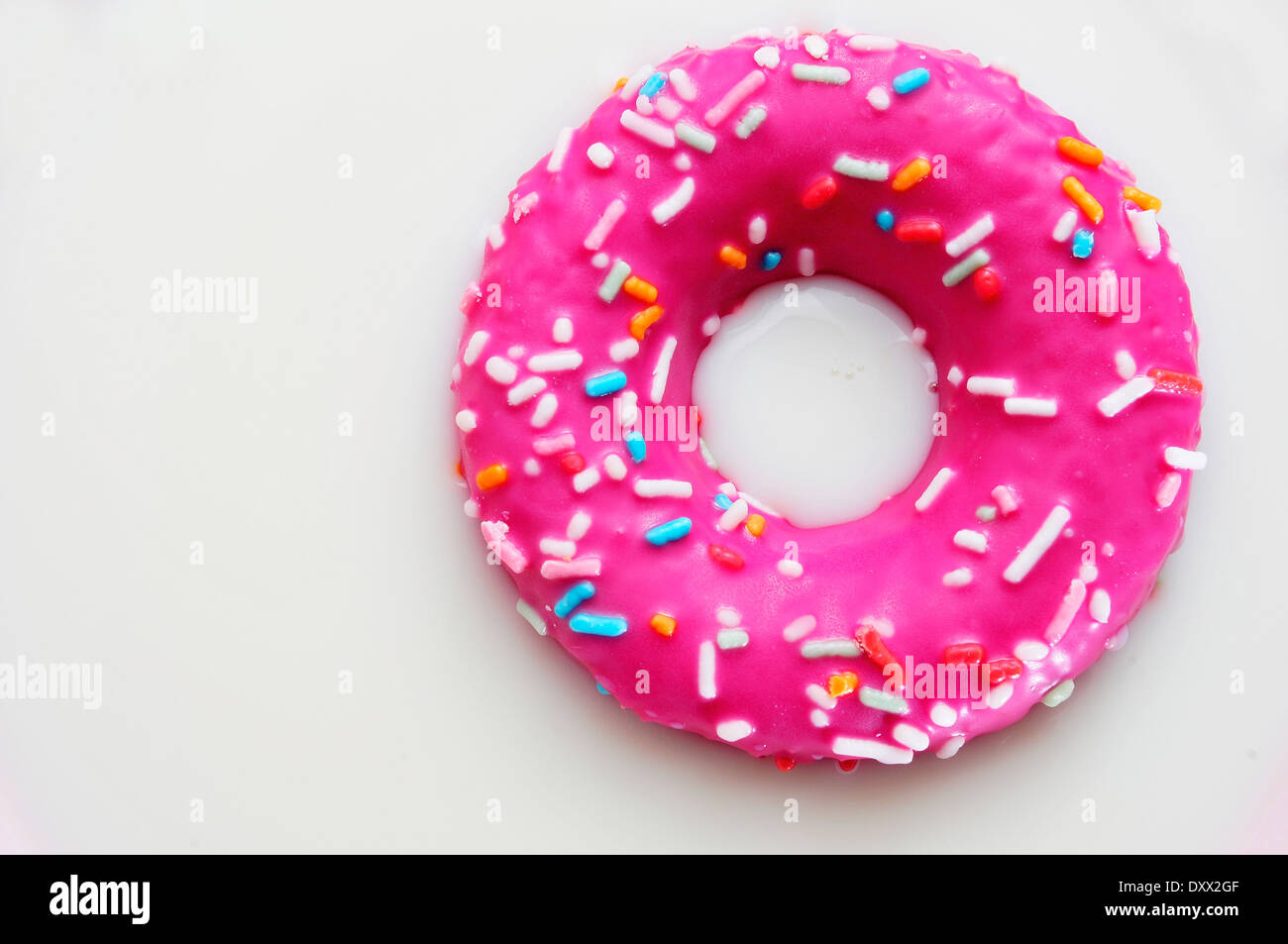 a donut coated with a pink frosting and sprinkles of different colors soaking in milk - Stock Image
