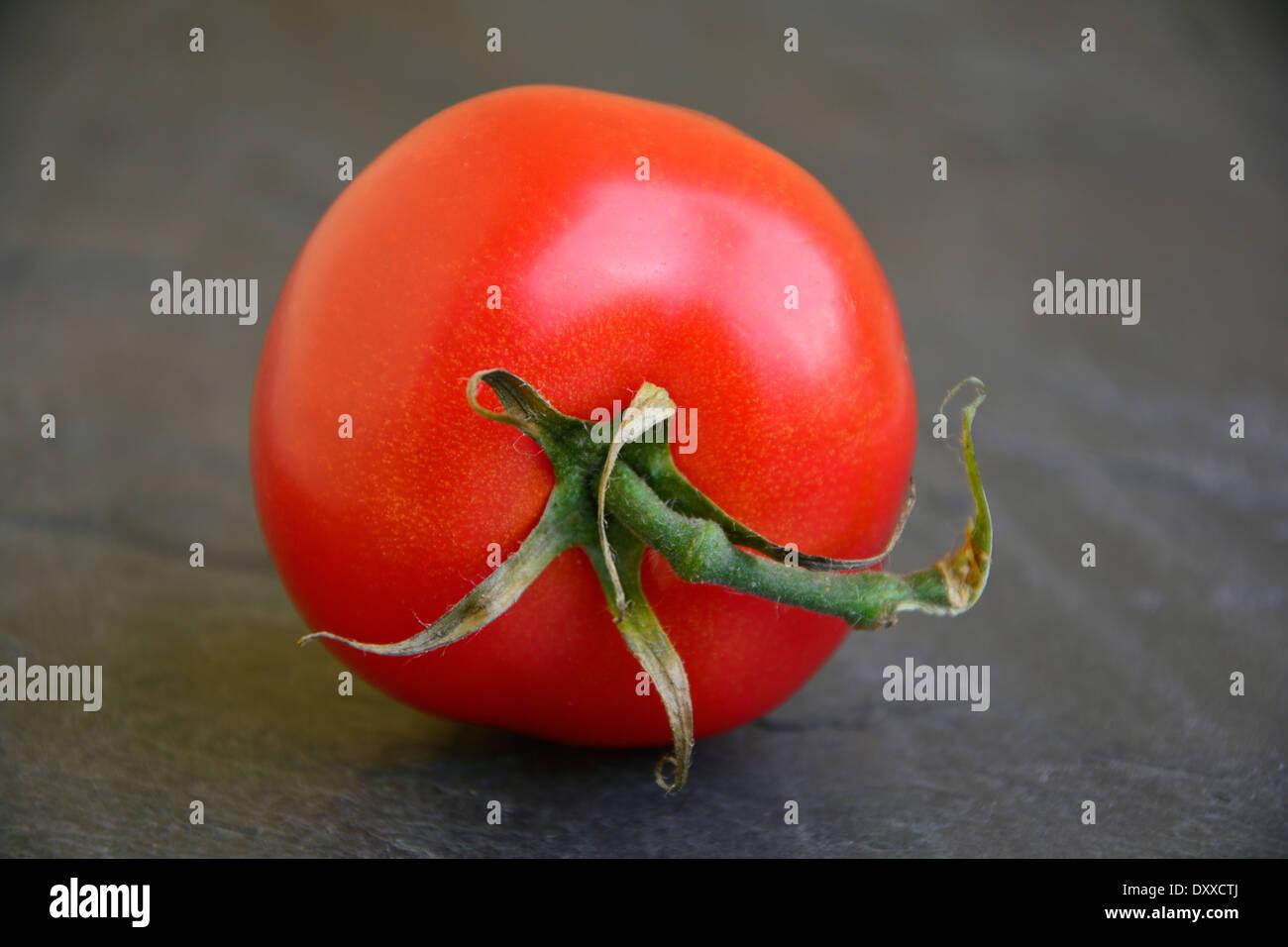 Fresh red tomato on grey black slate macro close-up Frische rote Tomate mit Blattgrün auf einer grauen Schieferplatte Makro Stock Photo