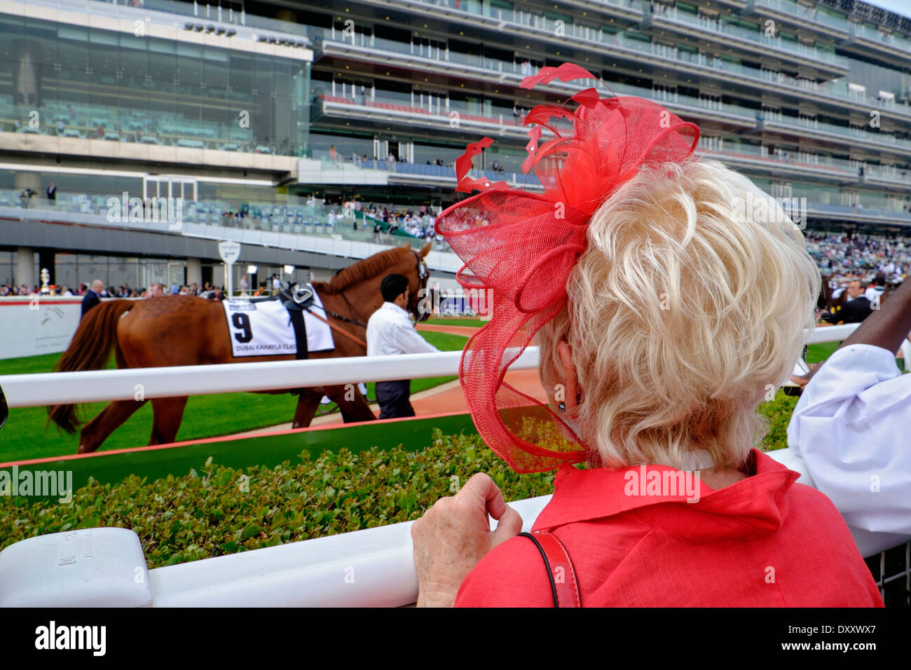 Lady with hat looking at horses at Dubai World Cup horse racing championship at Meydan racecourse in Dubai United Arab Emirates - Stock Image