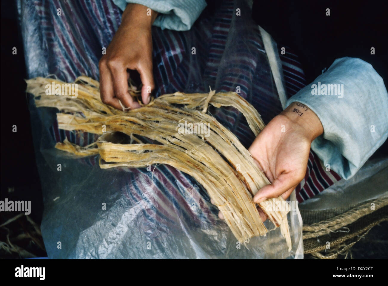 Worker splitting reeds for hand-made paper at a factory in Thimpu, Bhutan. - Stock Image