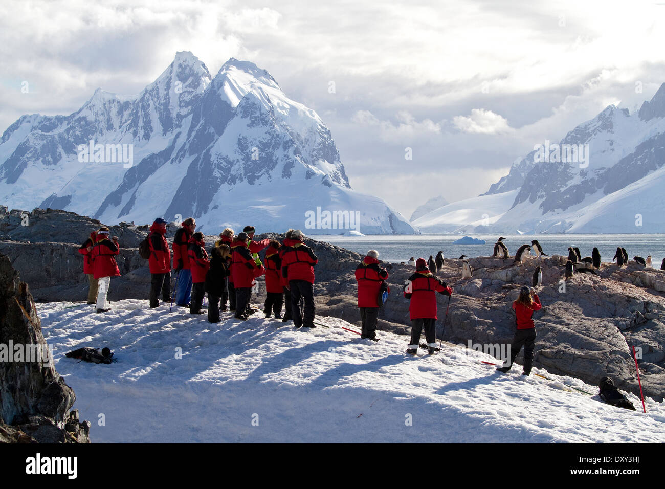 Antarctica tourism with cruise ship passengers viewing Antarctic penguins and mountain, mountains landscape. - Stock Image