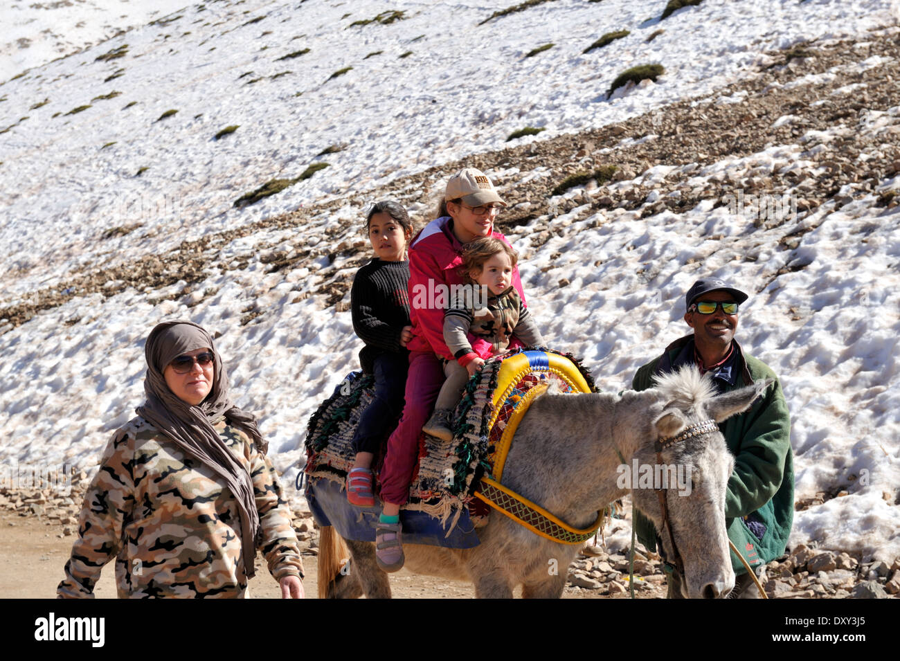 Family being guided on donkey ride Atlas mountains Morocco, Oukaimeden, March, Stock Photo