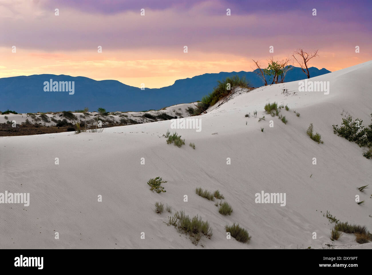 White Sands National Monument at sunset. New Mexico, USA - Stock Image