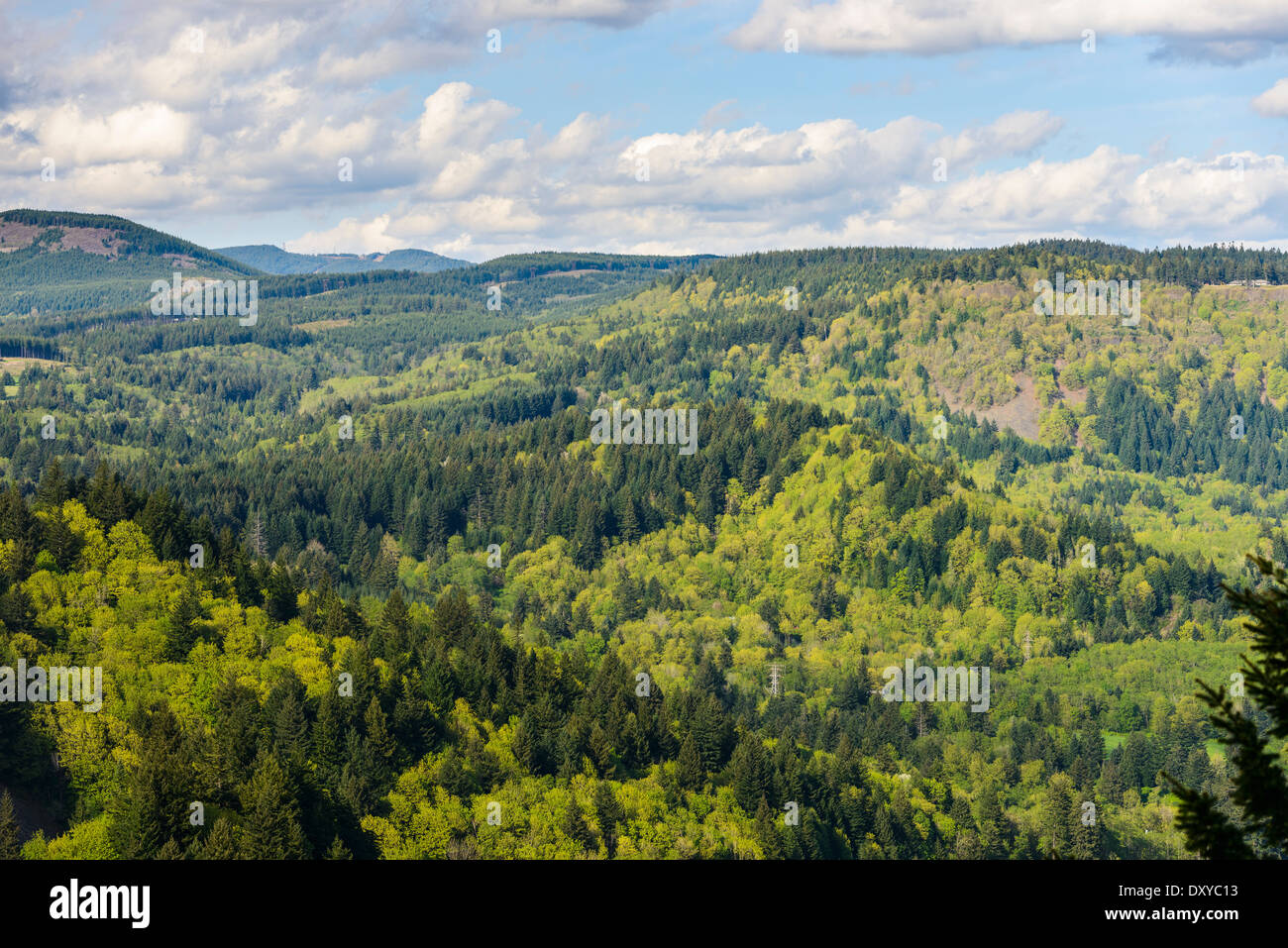 View from Nancy Russell Memorial Lookout at the rim of Cape Horn. - Stock Image