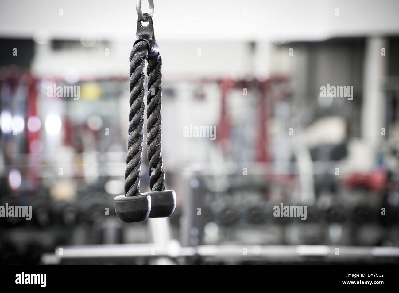 Tricep Rope In Gym, Fitness Center - Stock Image