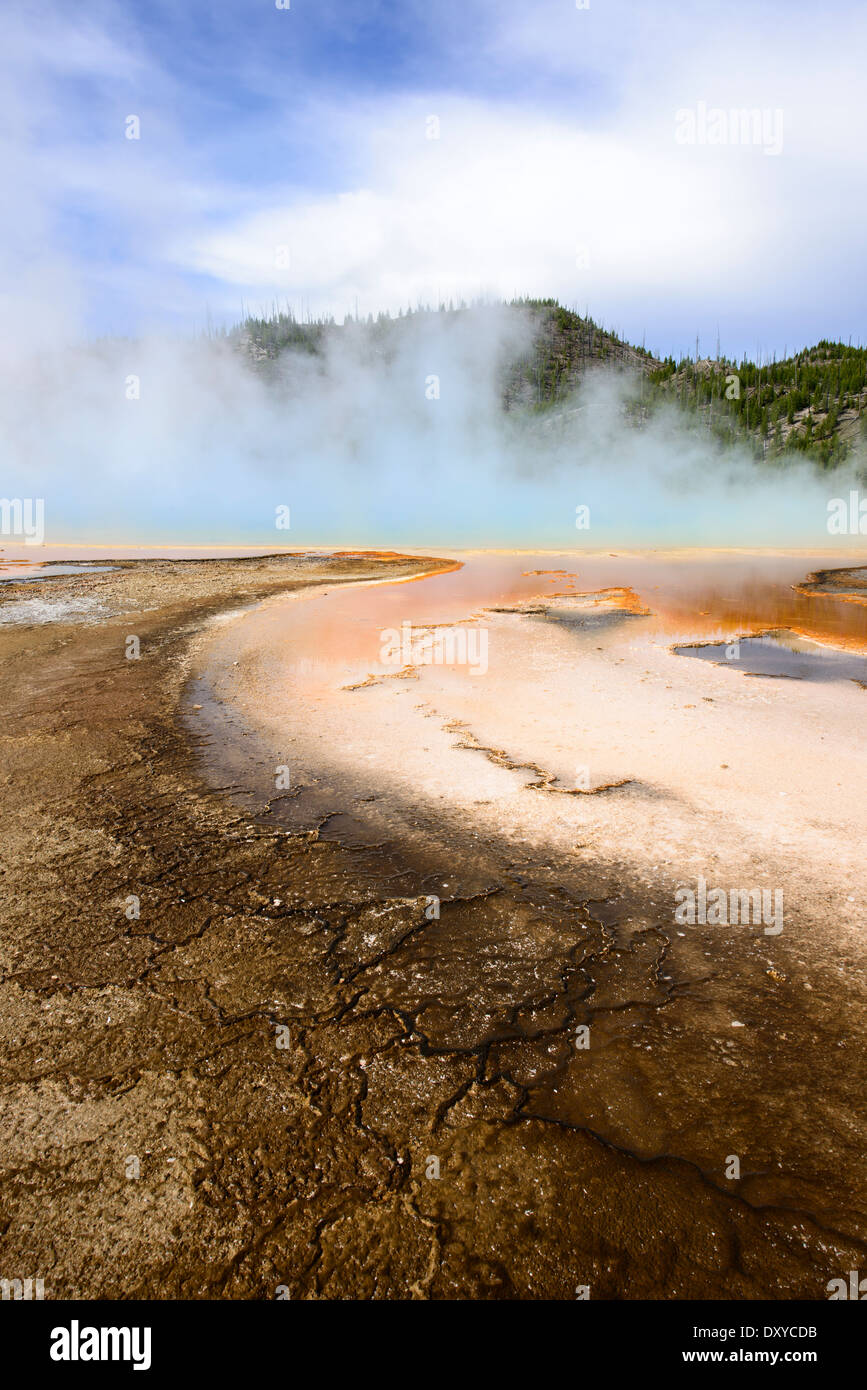 Microbial mat at Grand Prismatic Spring, part of the Midway Geyser Basin in Yellowstone National Park. - Stock Image