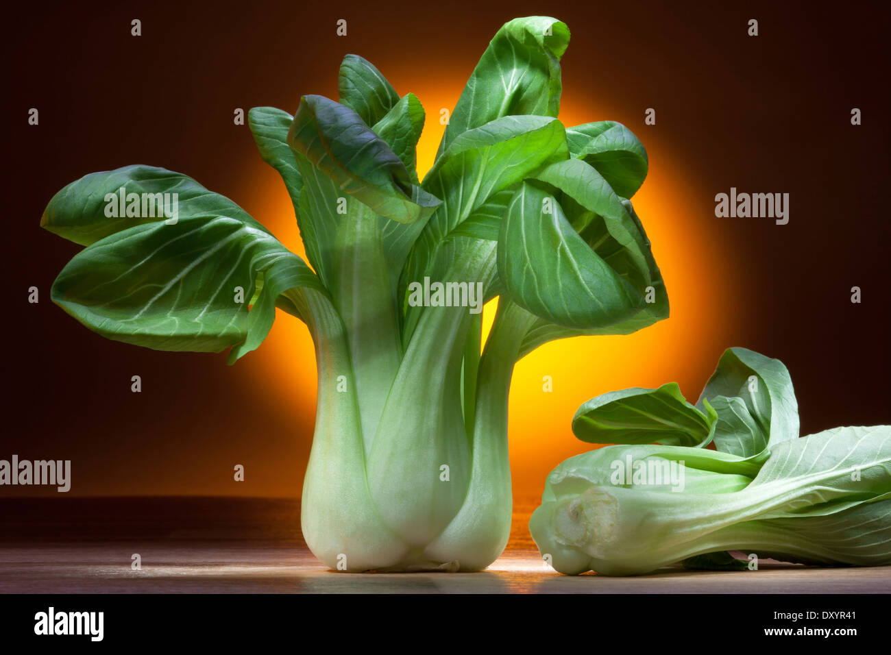 Bok Choy, Pak Chol or Pak Choi is a Chinese cabbage of a variety with smooth-edged tapering leaves. - Stock Image