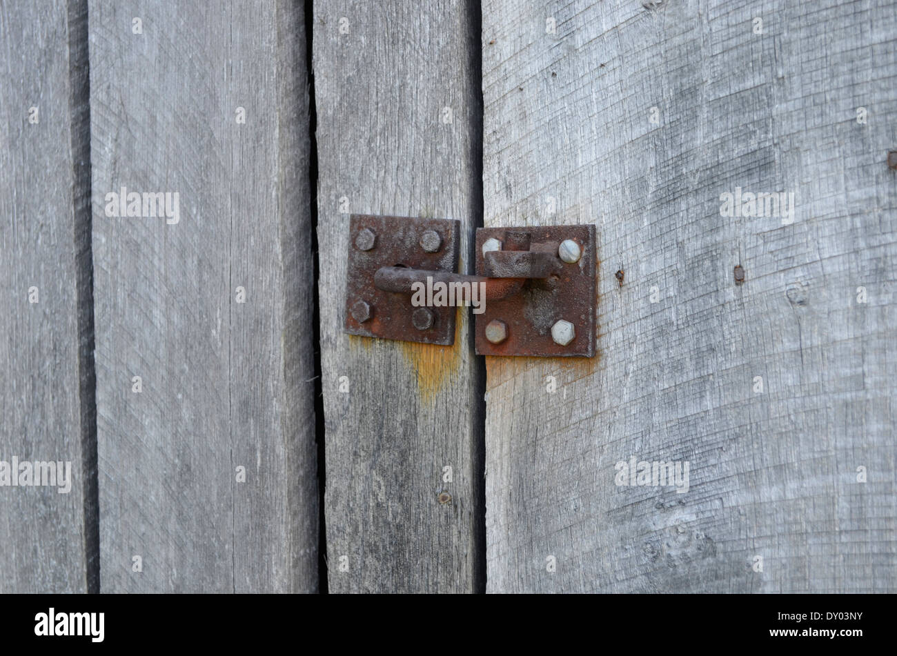 Old Rusty hinge on a shed - Stock Image