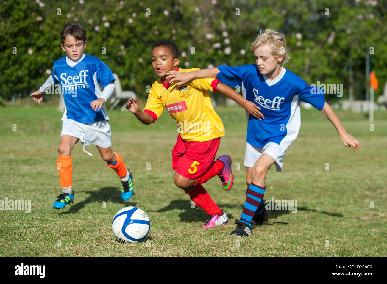 Football players of the U9 youth teams tackling to win the ball, Cape Town, South Africa - Stock Image