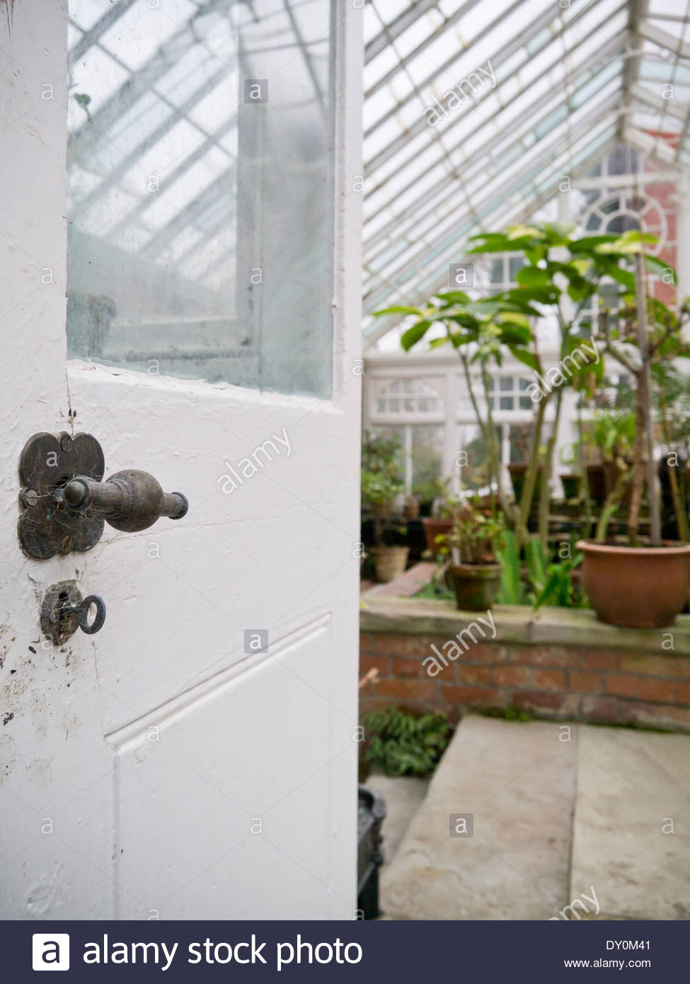 Open door to the greenhouse at Hergest Croft Gardens: Kington, Herefordshire, England. - Stock Image