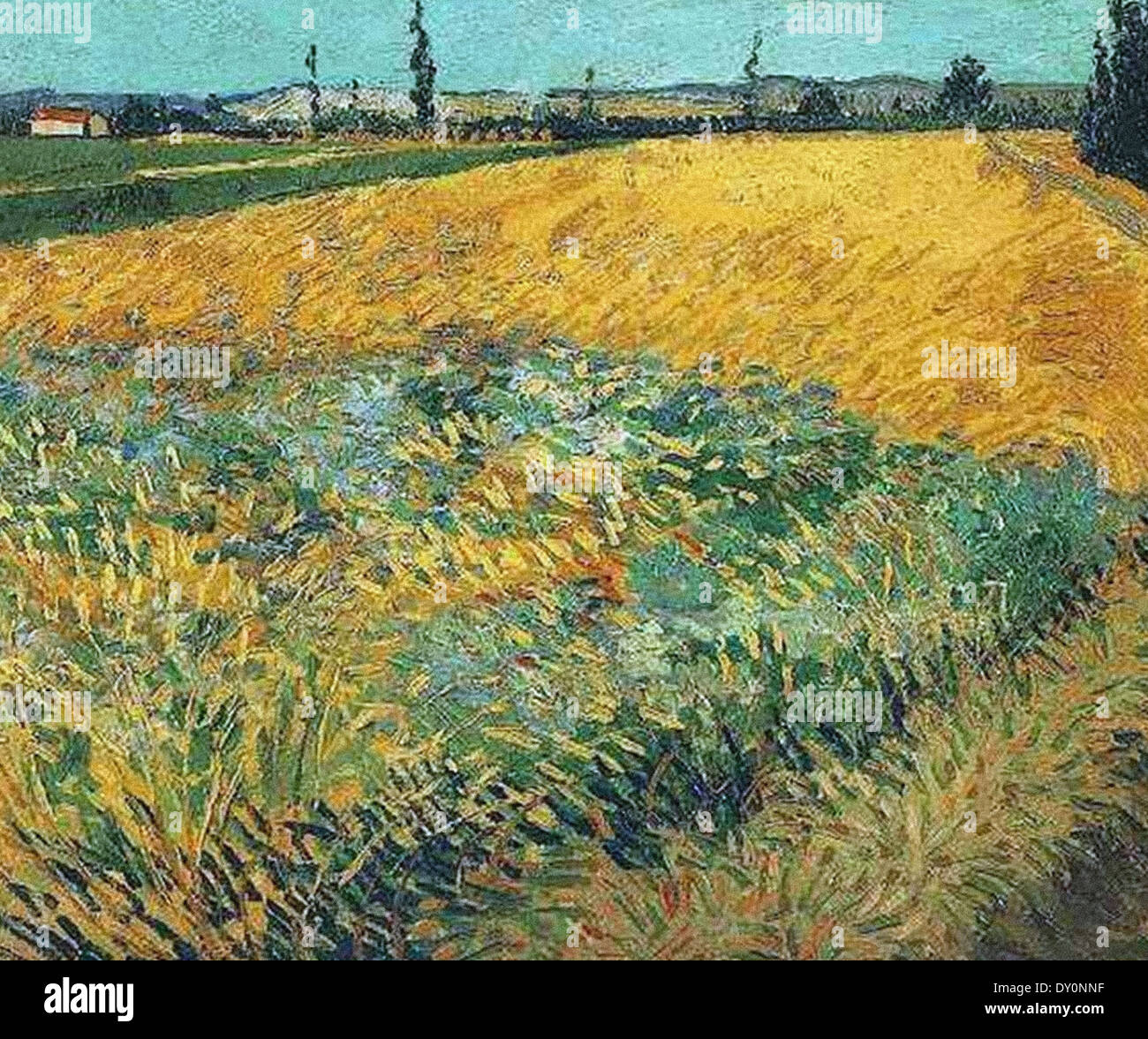 Vincent van Gogh Wheat Field Alpilles Foothills - Stock Image