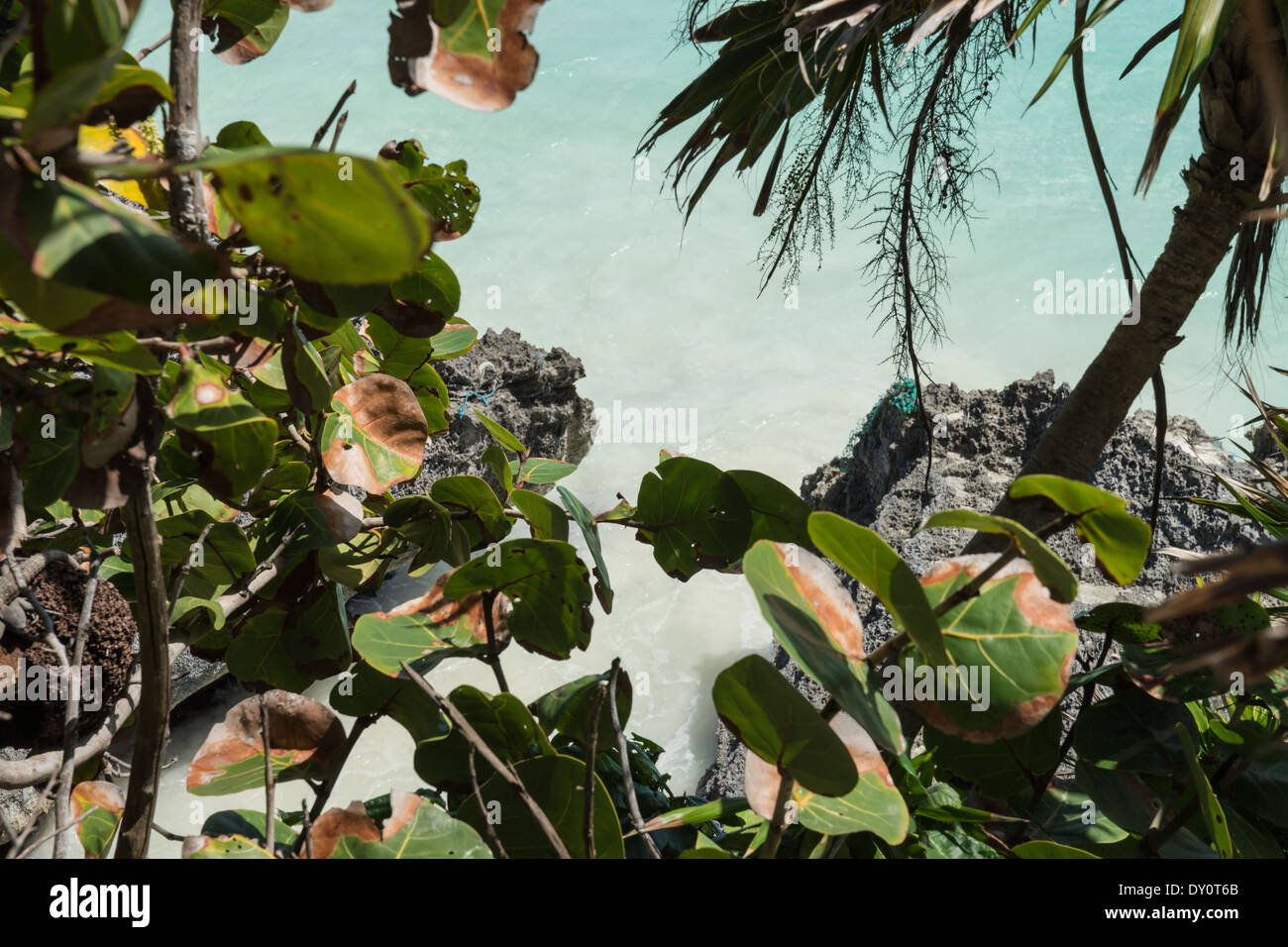 tulum mexico maya ruins - Stock Image