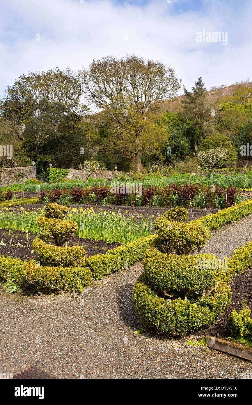 Ireland, Co Donegal, Glenveagh Castle Gardens, formal planting - Stock Image
