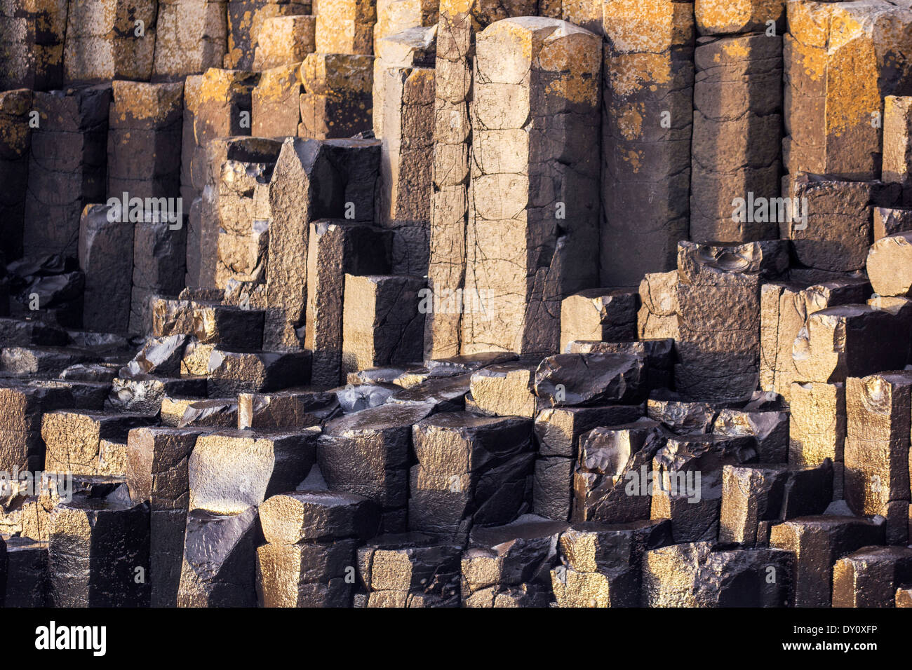 Details of the columns from the Giant's Causeway, UNESCO world Heritage Site, Northern Ireland. - Stock Image
