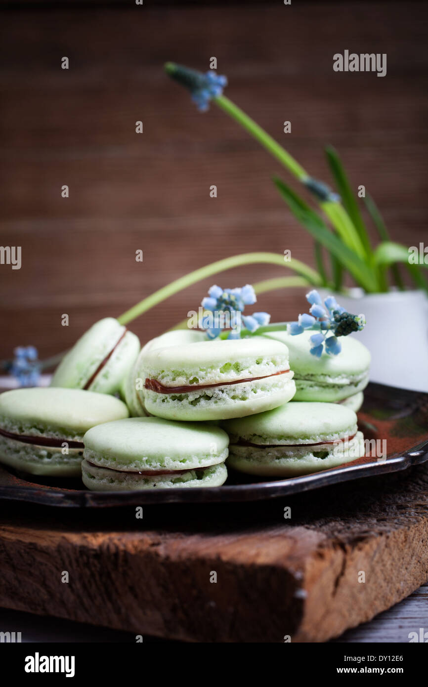 Homemade mint macaroons with dark chocolate filling - Stock Image