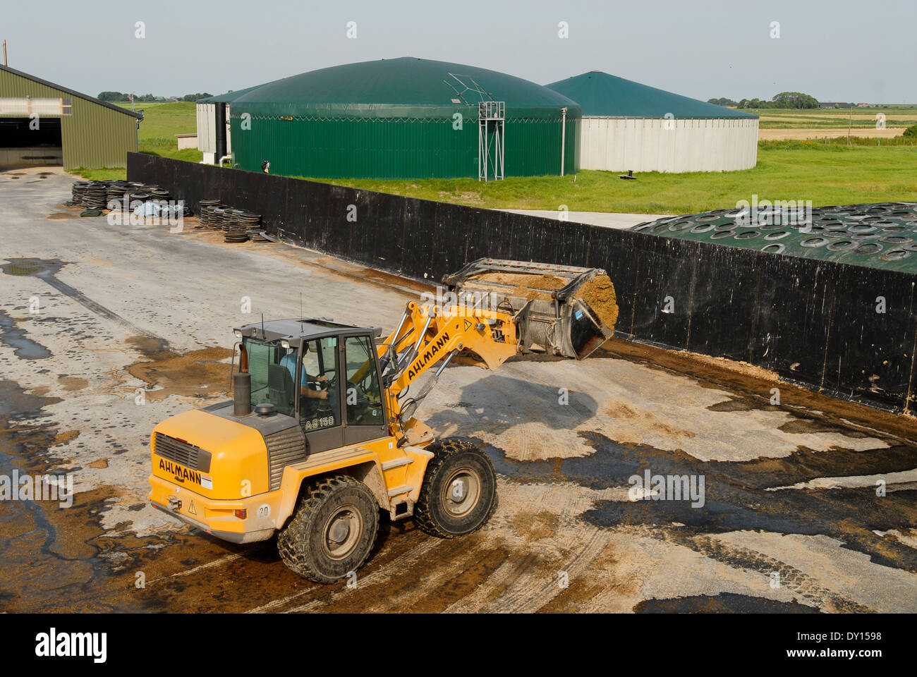 GERMANY Biogas plant at Pellworm Northsea island, maize substrate storage - Stock Image