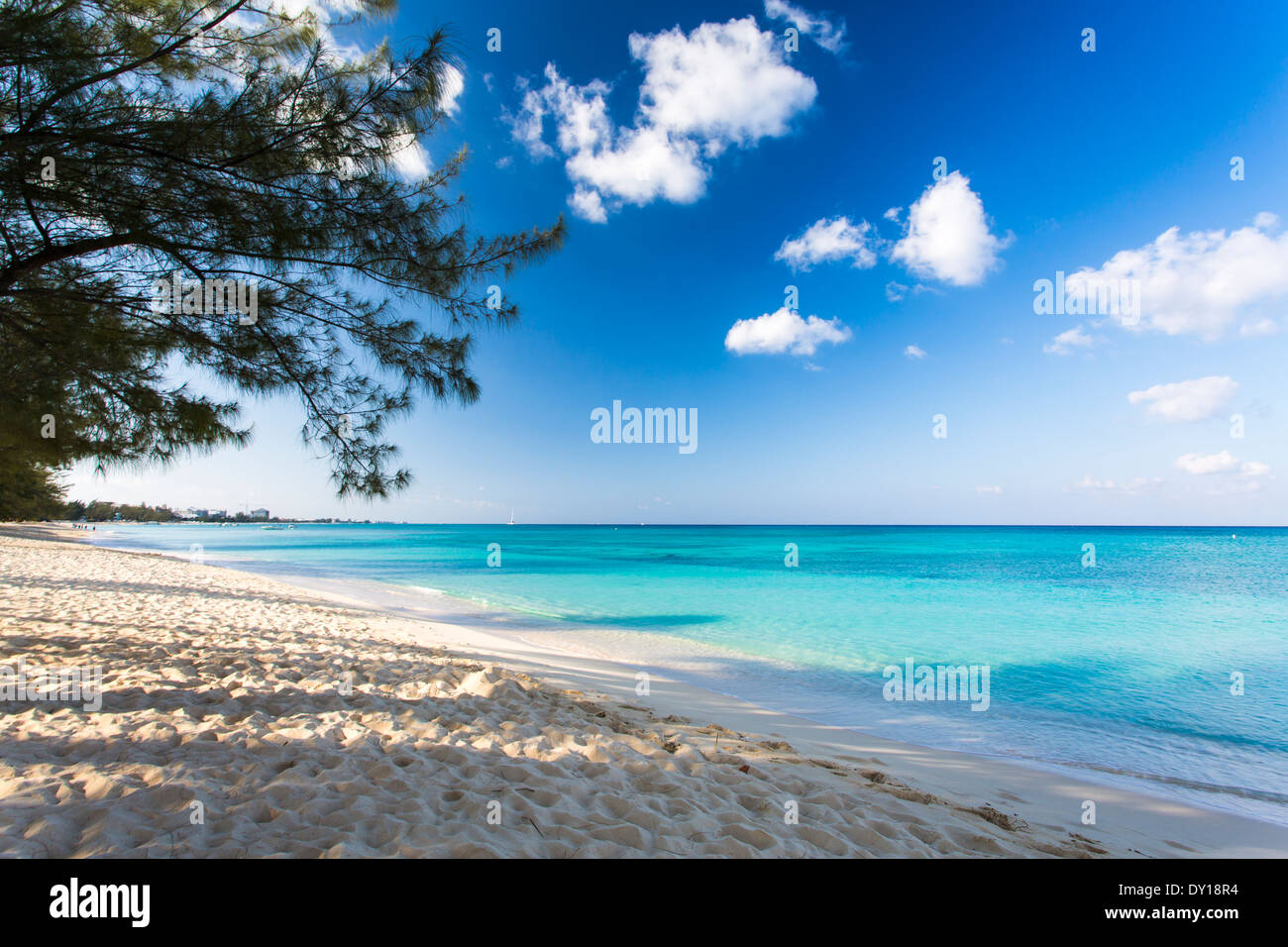 Early morning on Seven Mile Beach, Grand Cayman, Cayman Islands, Caribbean. - Stock Image