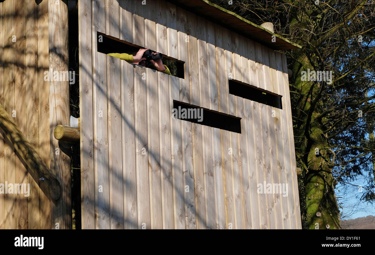 timber wildlife hide, lake gast, normandy, france - Stock Image