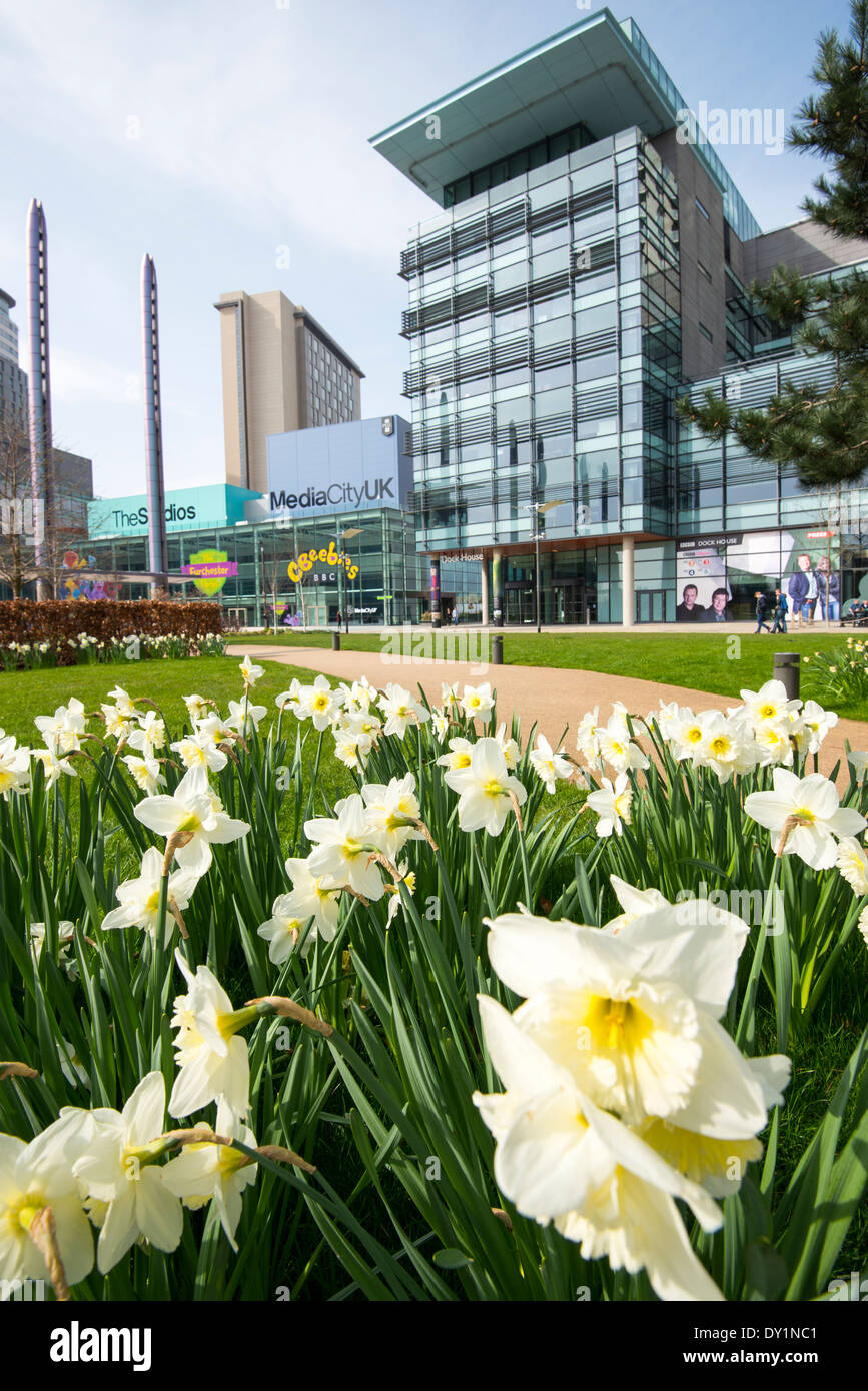 Spring at Media City Salford Quays, Manchester England UK - Stock Image