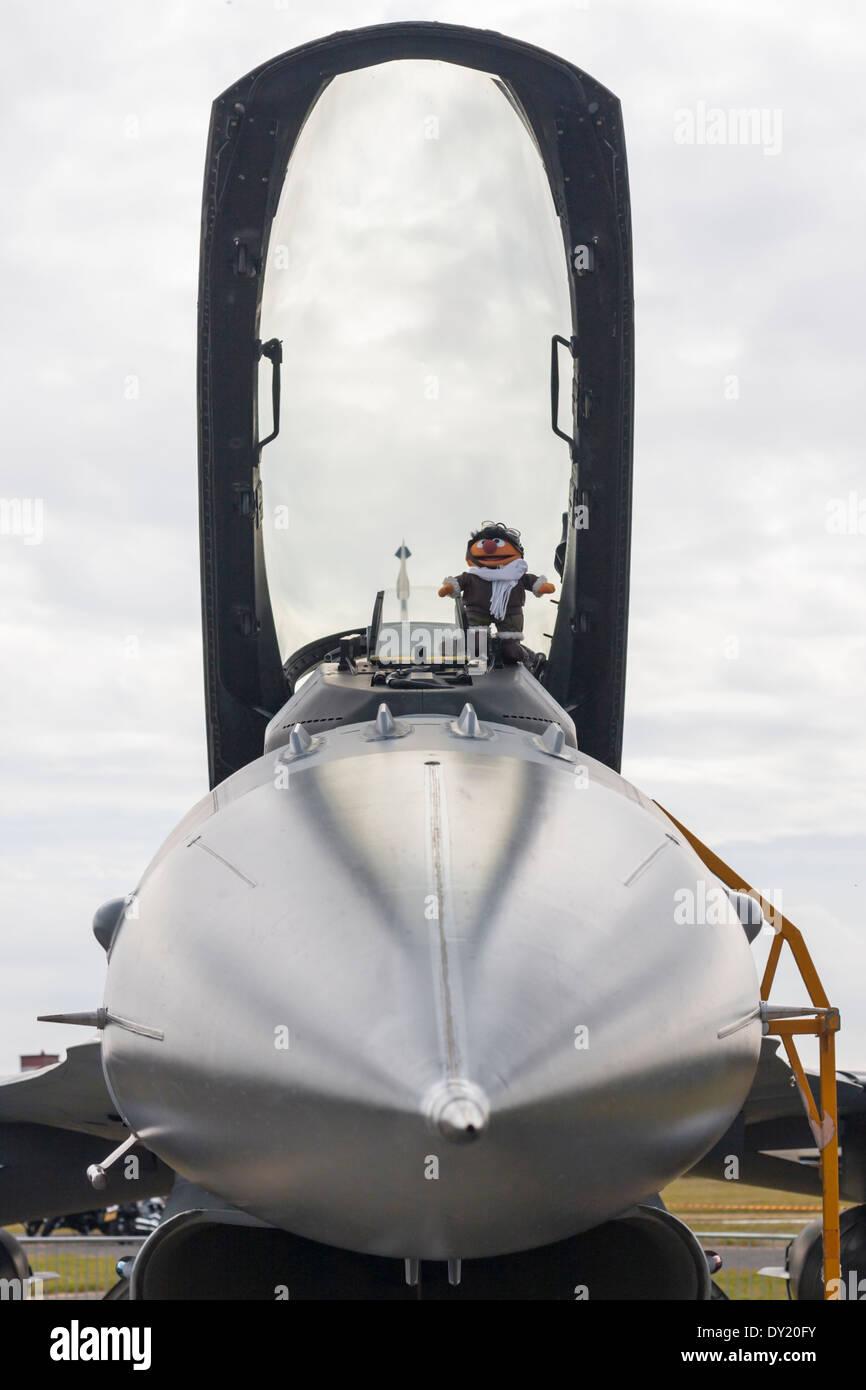 Belgian Air force Lockheed Martin F-16AM/BM multirole fighter - Stock Image