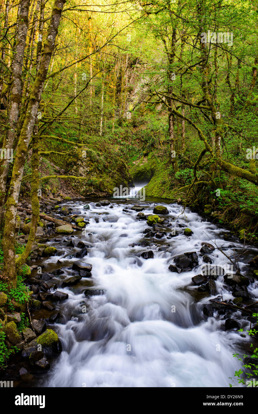 Bridal Veil Creek along the Columbia River Gorge. - Stock Image
