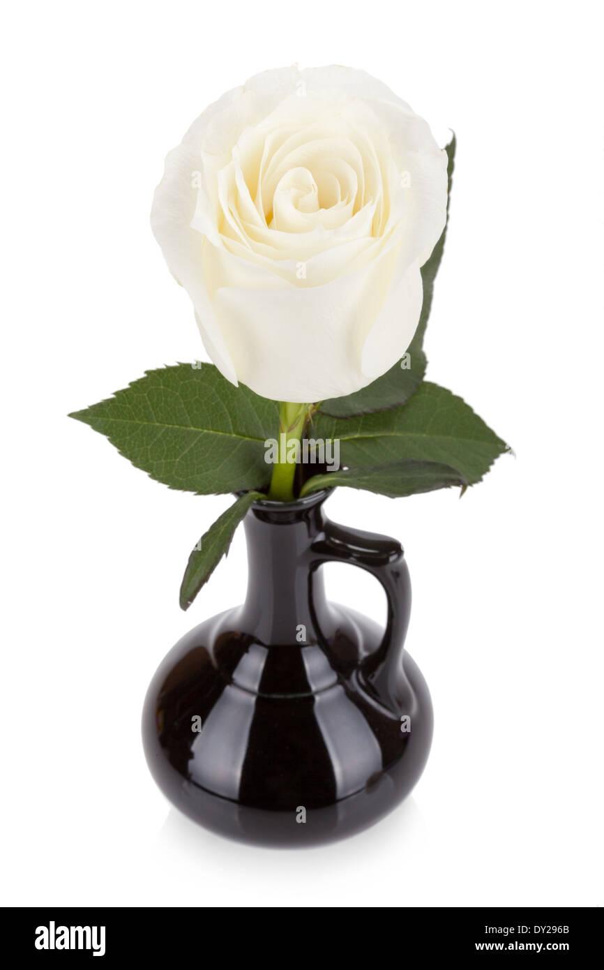 285 & Glass Vase Black Background Stock Photos \u0026 Glass Vase Black ...