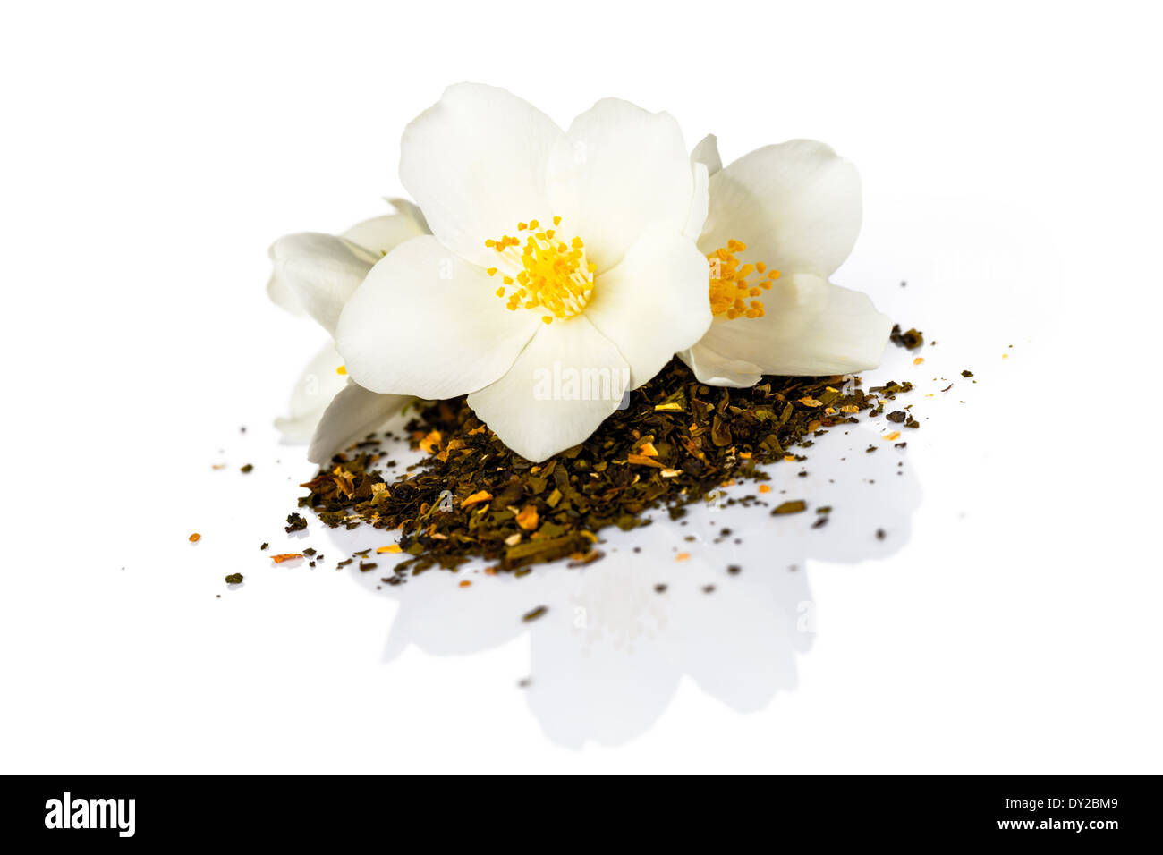 Jasmine Tea Dry Stock Photos Jasmine Tea Dry Stock Images Alamy