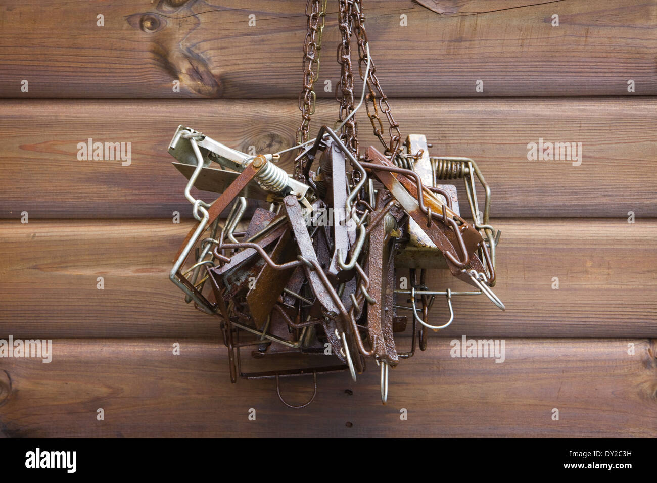 Squirrel Trap Stock Photos Squirrel Trap Stock Images Alamy