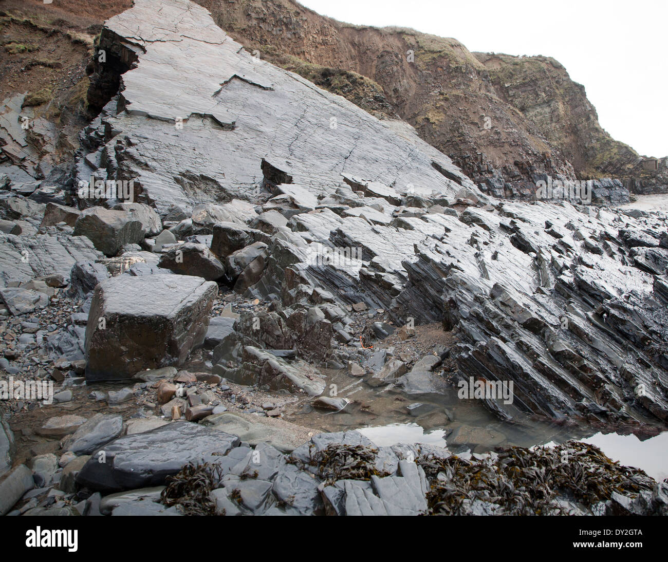 Rocky wave cut platform erosional landforms with ridges formed by eroded tilted strata at Hartland Quay, north Devon, England - Stock Image