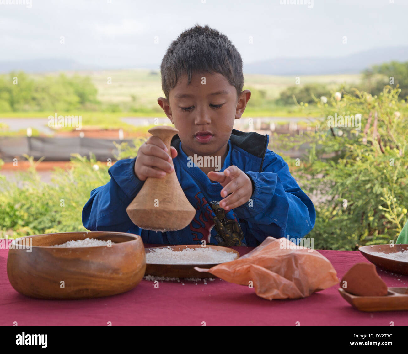 Boy pounding Alaea salt during with a mortar and pestle traditional Hawaiian sea salt making process - Stock Image