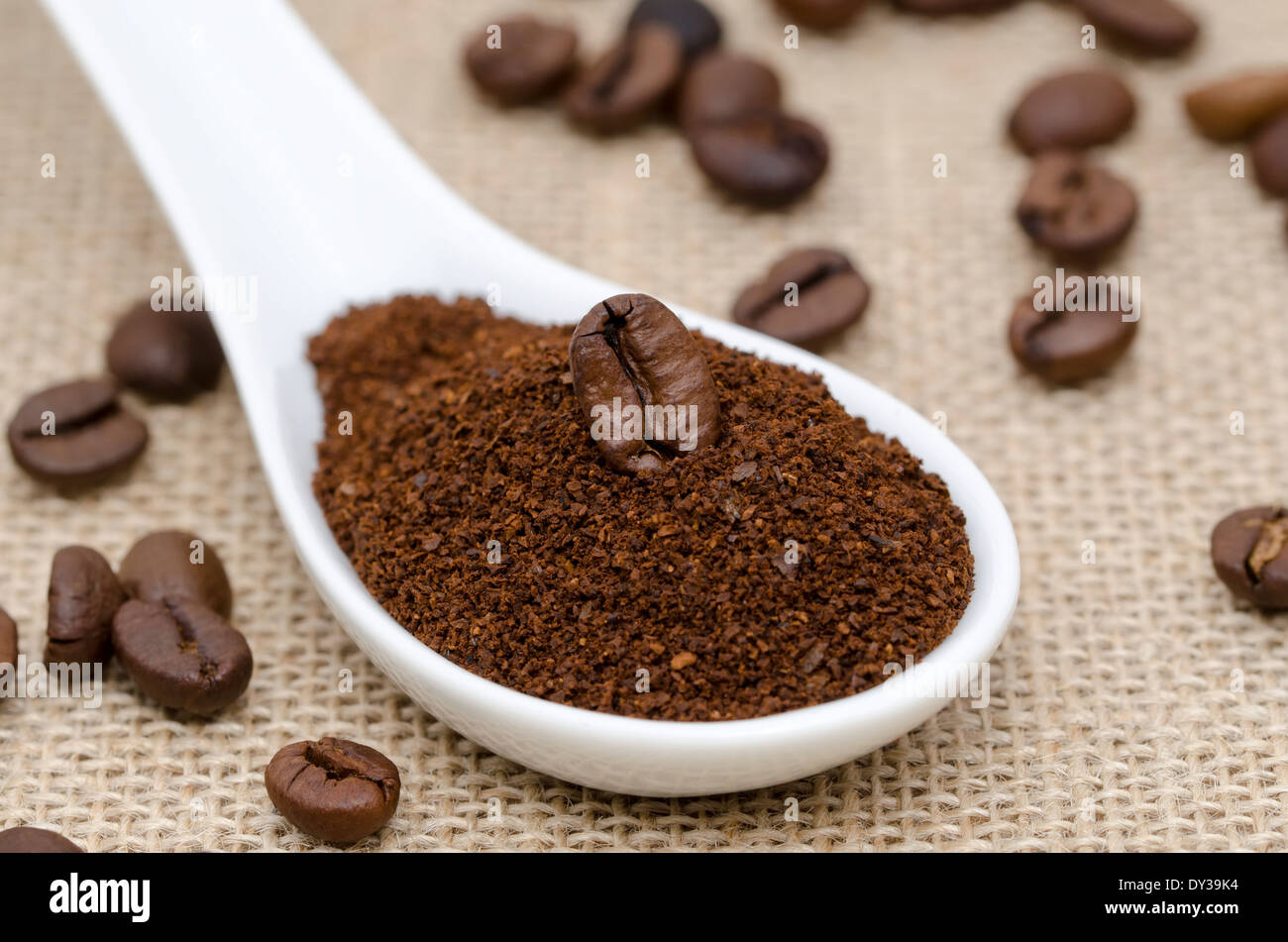 white porcelain spoon with ground coffee and coffee beans on a burlap - Stock Image