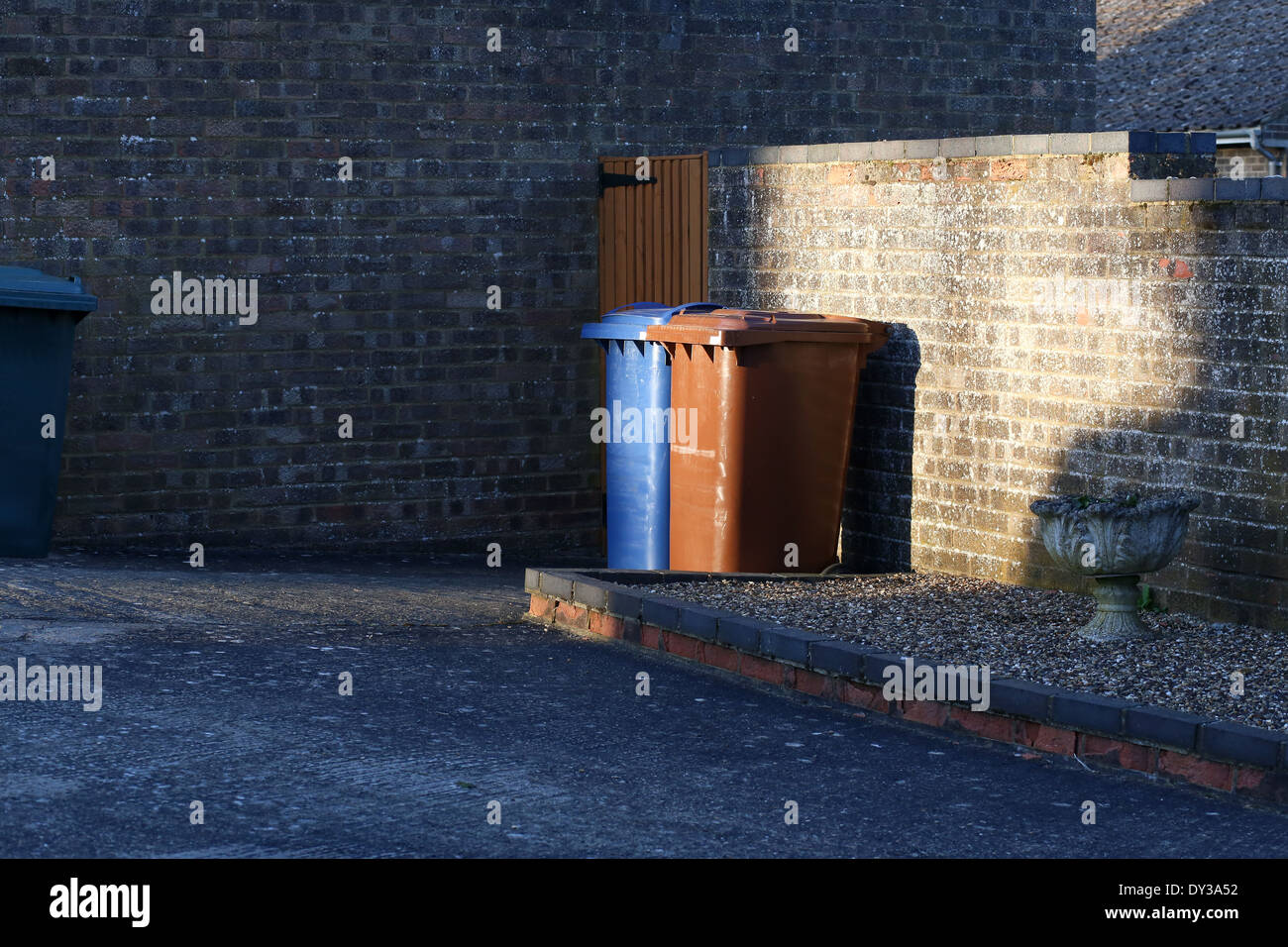 Wheelie bins, brown and blue trash cans sit side by side behind the house - Stock Image