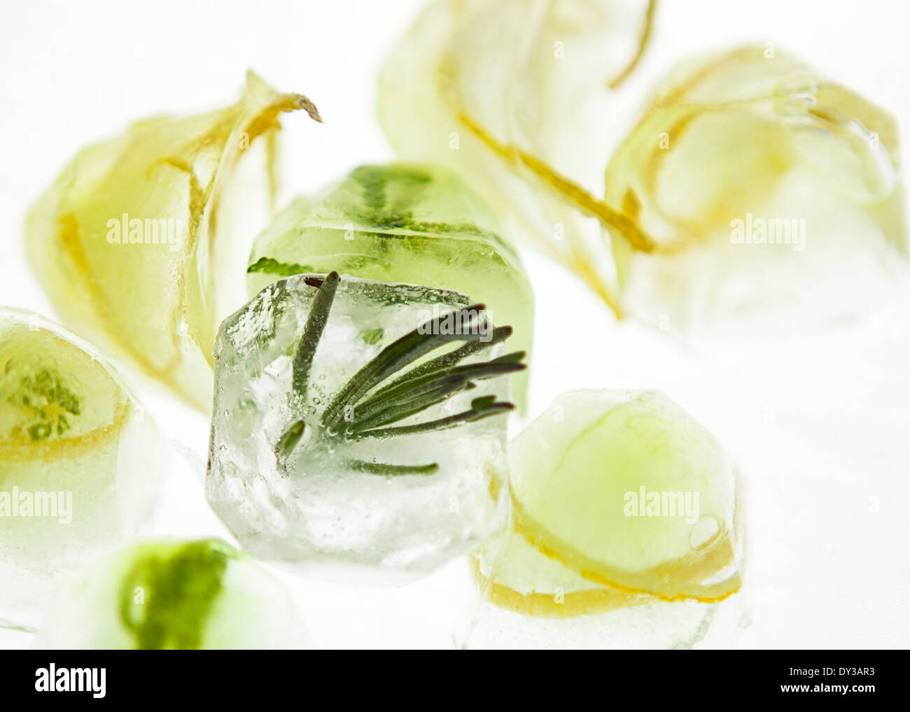Citrus herb ice cubes on a high key backdrop Stock Photo