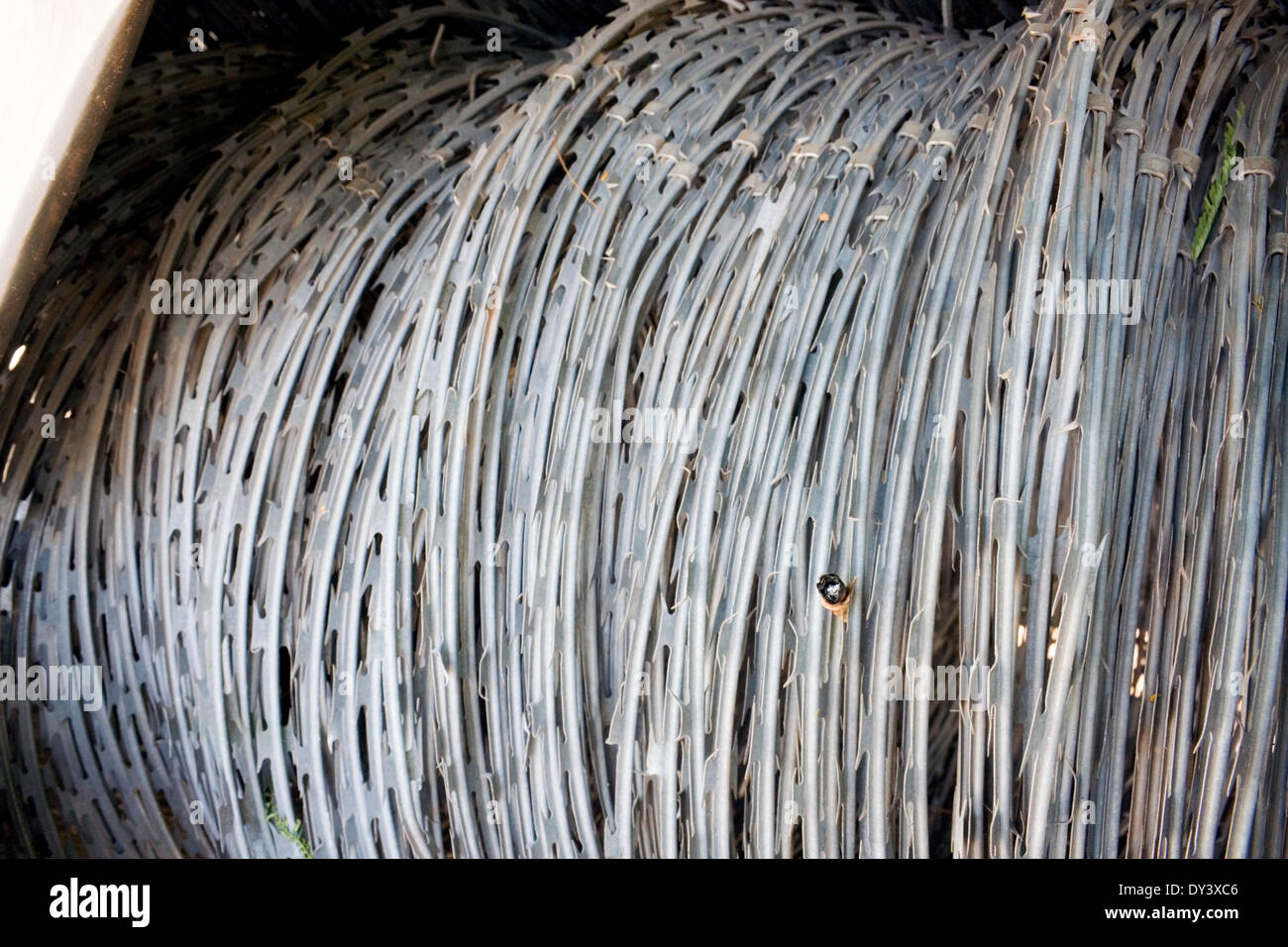Razor wire is wound in a police machine at Freedom Park in Phnom ...