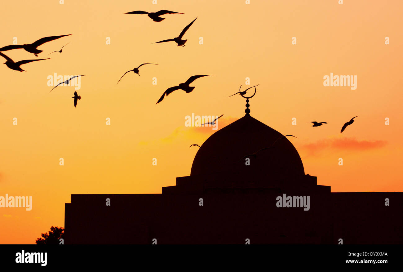 Mosque in the evening birds flying Stock Photo