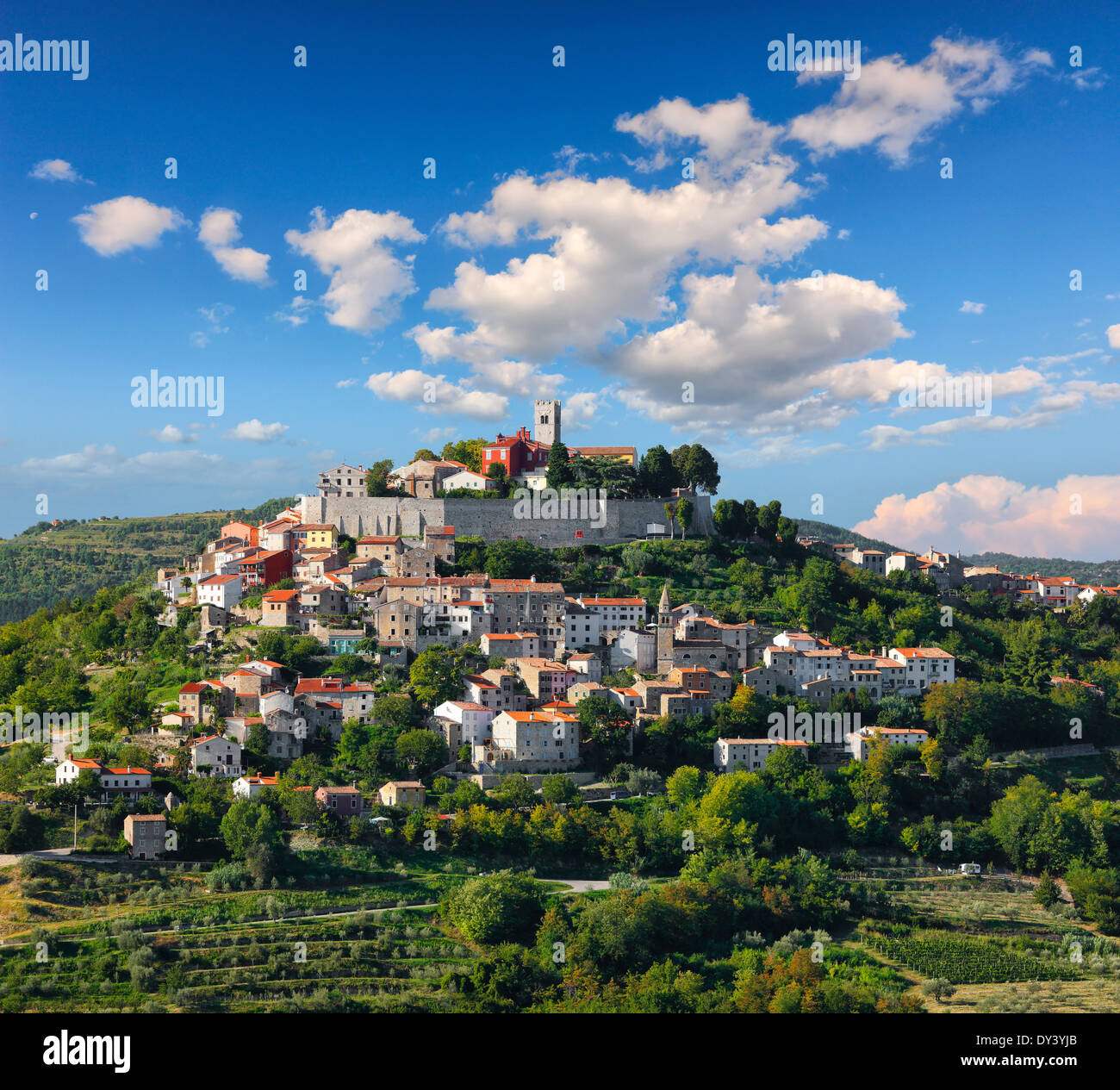 Motovun old town on the hill. Istria, Croatia Stock Photo