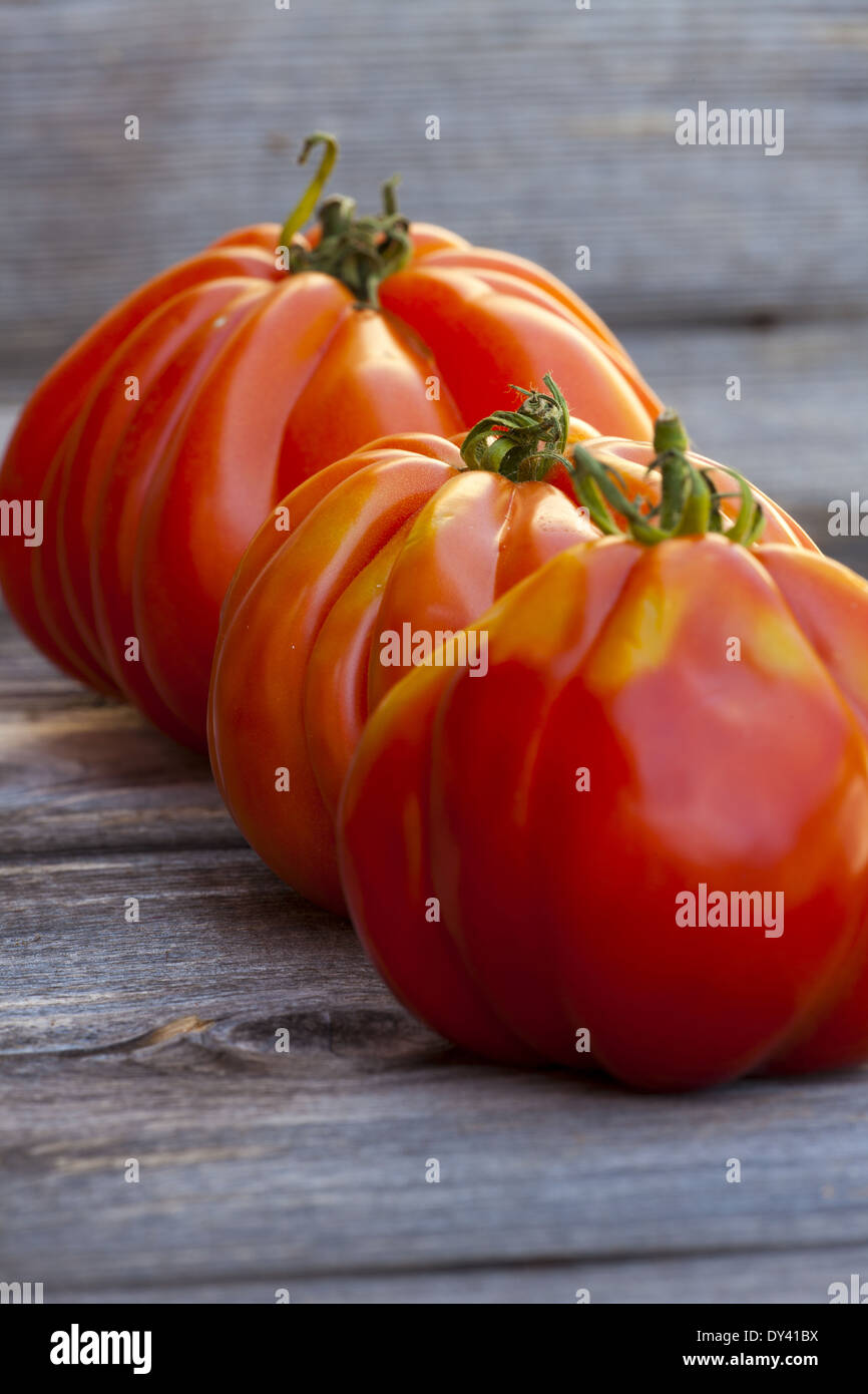 Three large Beefsteak Tomatoes in a Row fresh from the Weekly Market on a old wooden Table - Stock Image