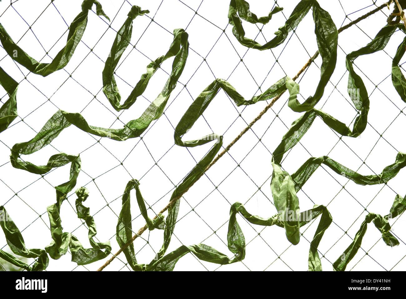 Green camouflage netting - Stock Image