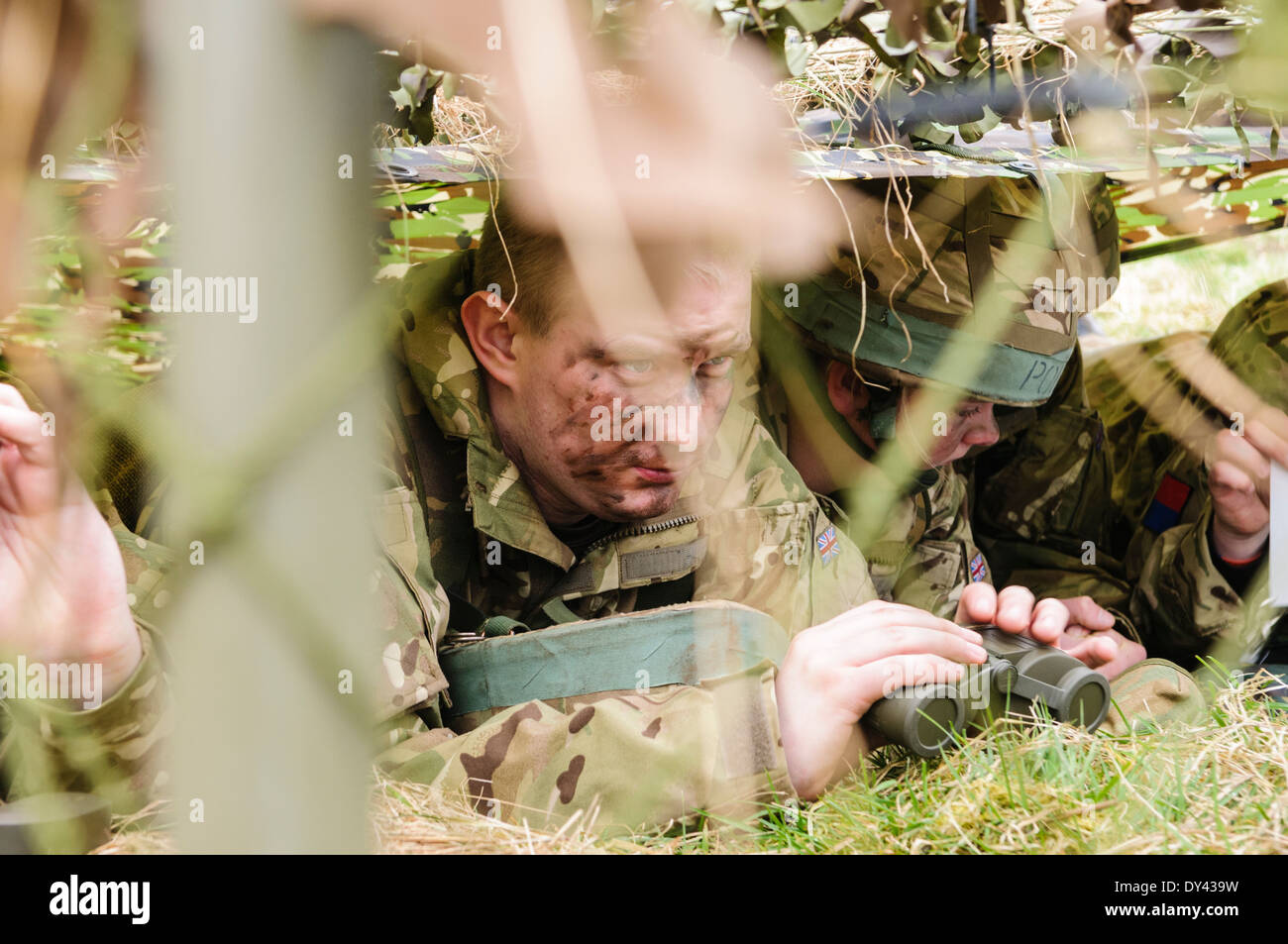 Four soldiers hide underneath camouflage netting in a forward observation post - Stock Image