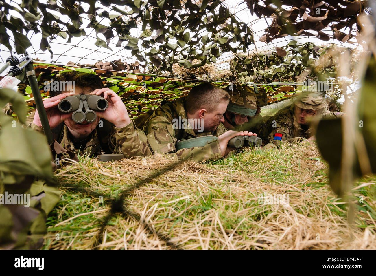A soldier looks through binoculars as she hides with three others underneath camouflage netting in a forward observation post - Stock Image