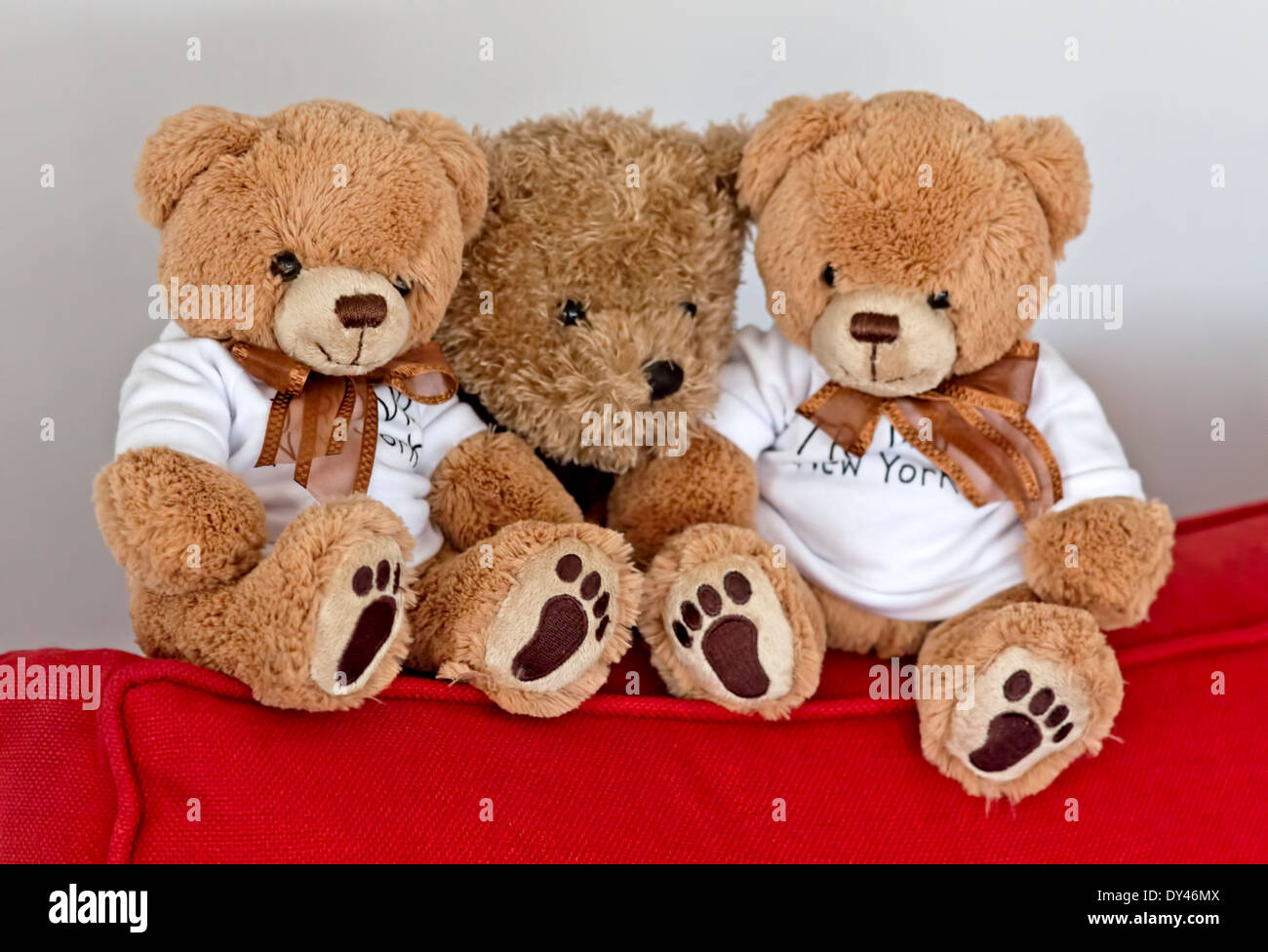 Collection of cuddly teddy bears in a seated position on a red couch. - Stock Image